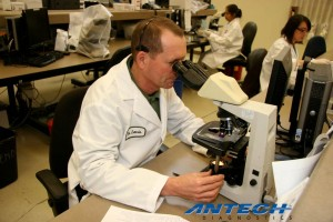 veterinary diagnostic testing - Dallas TX